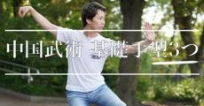 中国武術の基本的な3つの手型